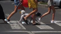 Canicula, un pericol pentru câini?